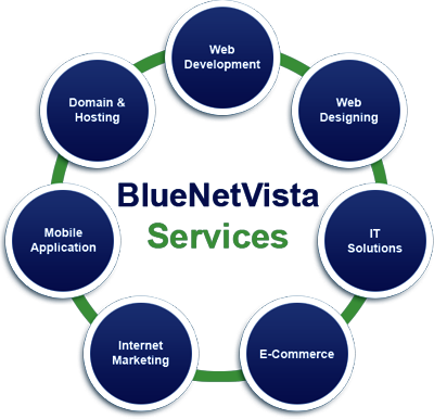 BlueNetVista Services